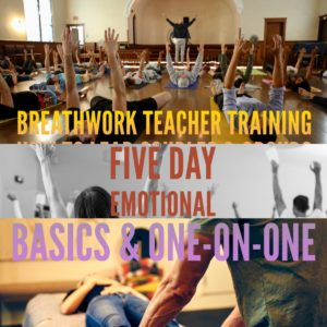 Breathwork Teacher Training Courses Online